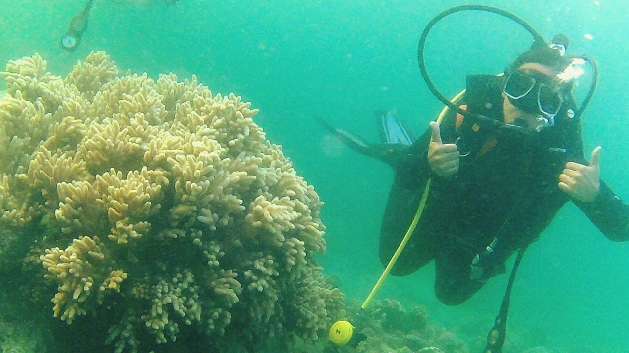My first ever scuba diving experience! 😍😍😂 Underwater UnderSea One Person Sea Life Swimming Water Scuba Diving Finding New Frontiers EyeEm Best Shots Eyeem Philippines Underwater Diving Selfie ✌ Anilao, Batangas Leisure Activity Adventure Outdoors