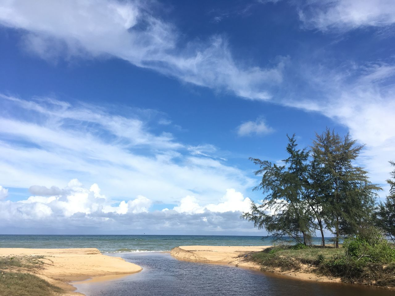 sea, beach, sand, sky, scenics, tranquil scene, water, nature, beauty in nature, tranquility, horizon over water, day, cloud - sky, no people, outdoors, blue, tree
