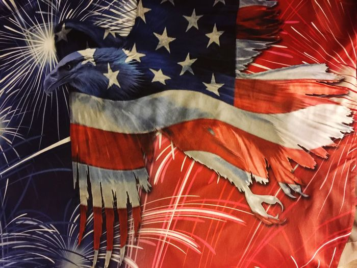 Eyeem Photography Eyeem Market Bright_and_bold Original Experiences Innovative Design Bald Eagle In Flight Red White And Blue Stars And Stripes Flag Cool Shirt USA Shirt Eagle In Flight Flag Eagle Shirt EyeEm Clothing Photography Fine Art Photography Color Palette What's On The Roll