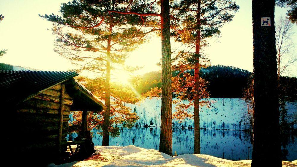 yesterday was an beautiful day Sun Light Winter Lake Sunny☀