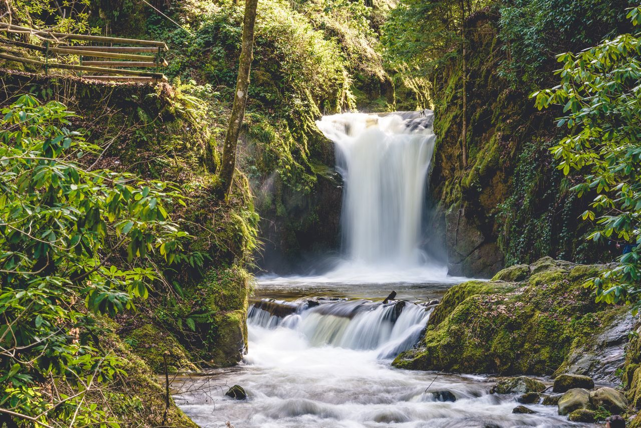 Beauty In Nature Environment Flowing Flowing Water Forest Freshness Idyllic Long Exposure Motion Nature No People Outdoors River Rock - Object Running Water Scenics Splashing Tranquility Travel Destinations Tree Vacations Water Waterfall Waterfront Wet