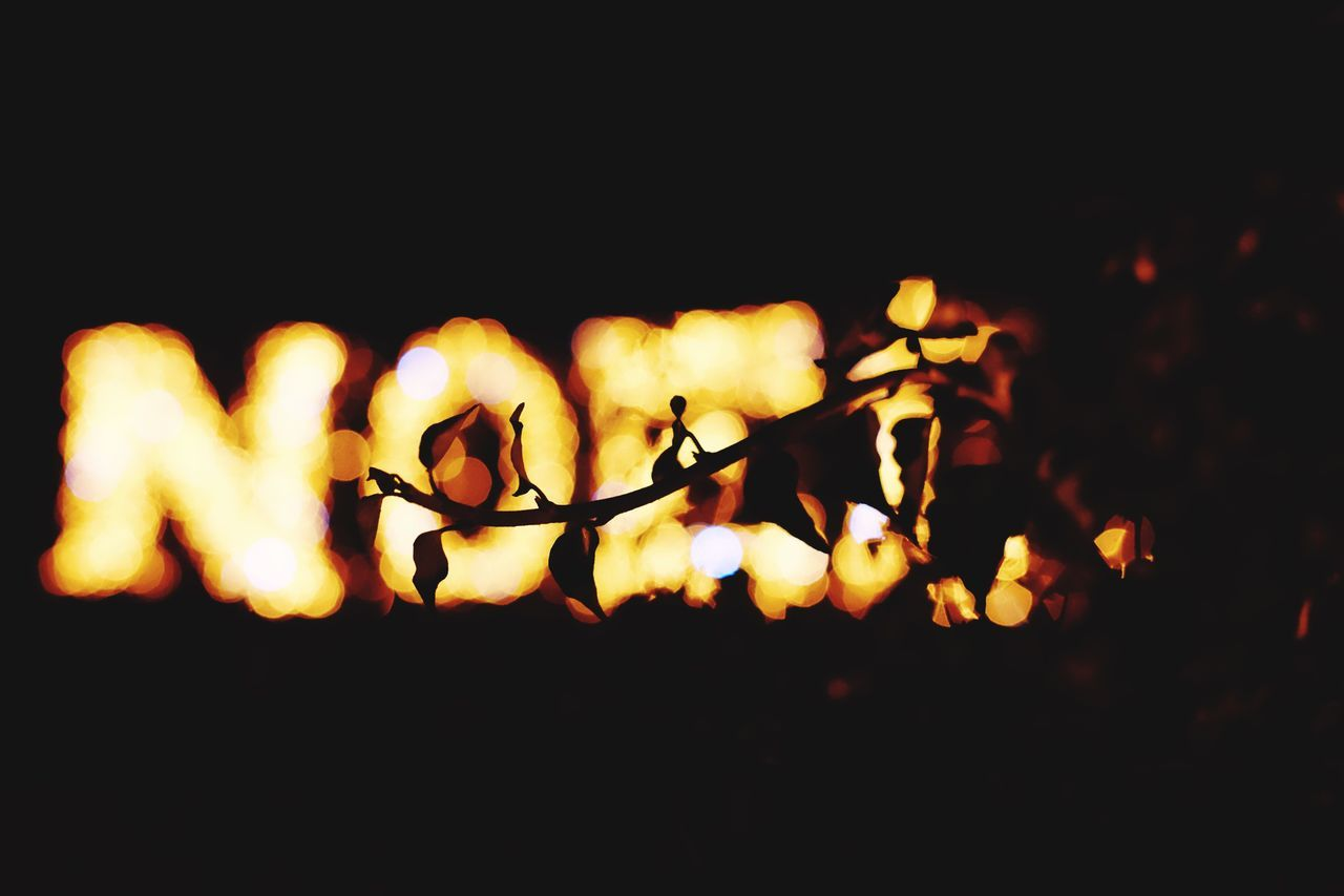 Noël Branch Picooftheday Photooftheday Limoges Illuminated Light Light And Shadow Nightphotography Night Lights Picoofthenight Night No People Bonfire Outdoors Close-up Nature