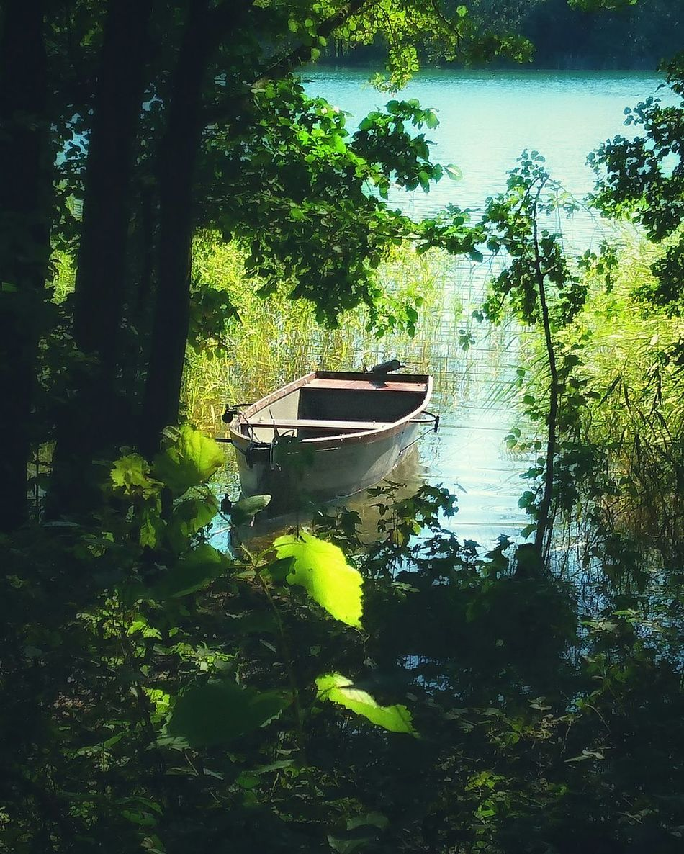 Tree Water Green Color Reflection Day No People Boat Lake Warmia Fishing Fishing Boat