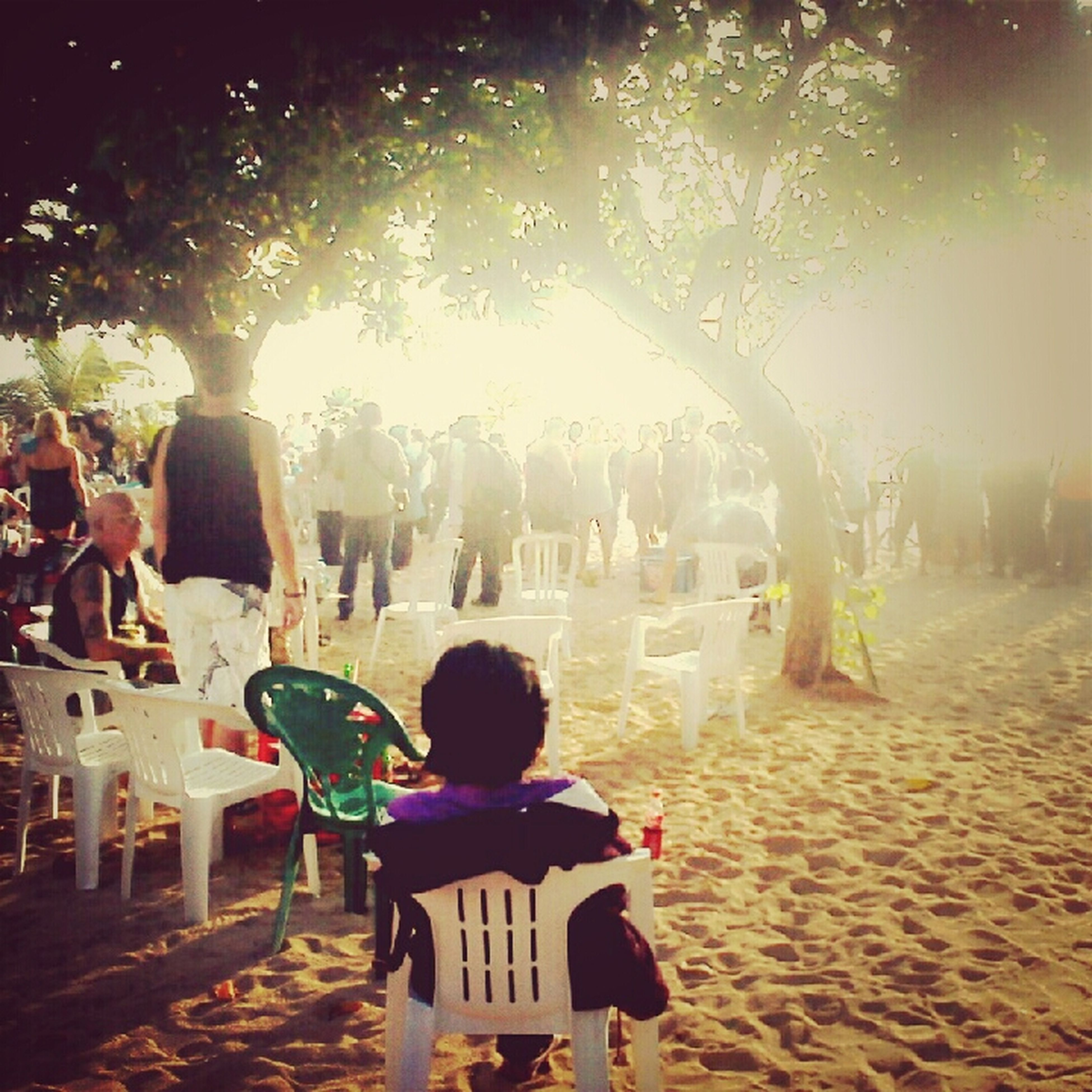 person, leisure activity, men, lifestyles, tree, sitting, sunlight, large group of people, relaxation, rear view, togetherness, chair, medium group of people, park - man made space, vacations, day, outdoors, standing, incidental people