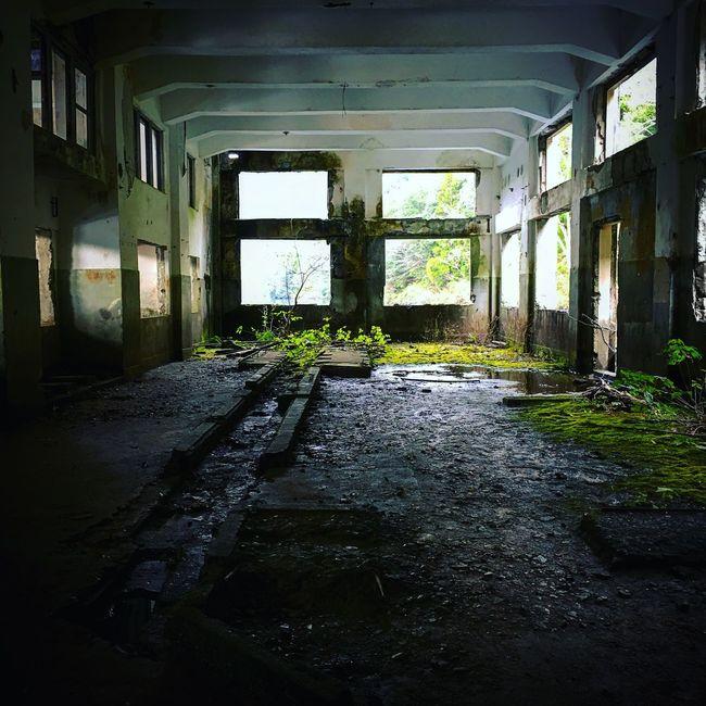 Ruins Japan Urbex 廃墟 NEONIP Catnip Iphone6 Urben Iphone6s IPhoneography