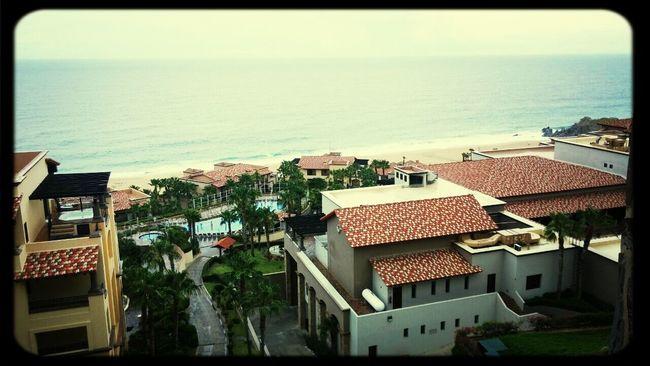 Good morning, Cabo! First Eyeem Photo