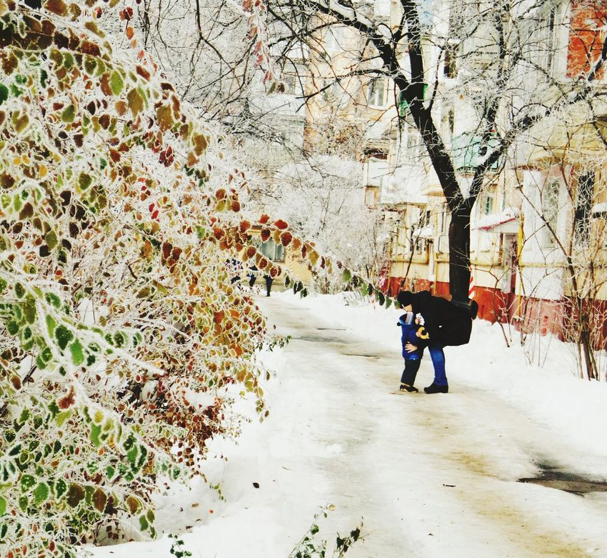Tree The Way Forward Rear View Day Outdoors Real People Nature Snow Winter Mom And Son This Is Love Careness Family Multicolored People Photography Frost Crystals