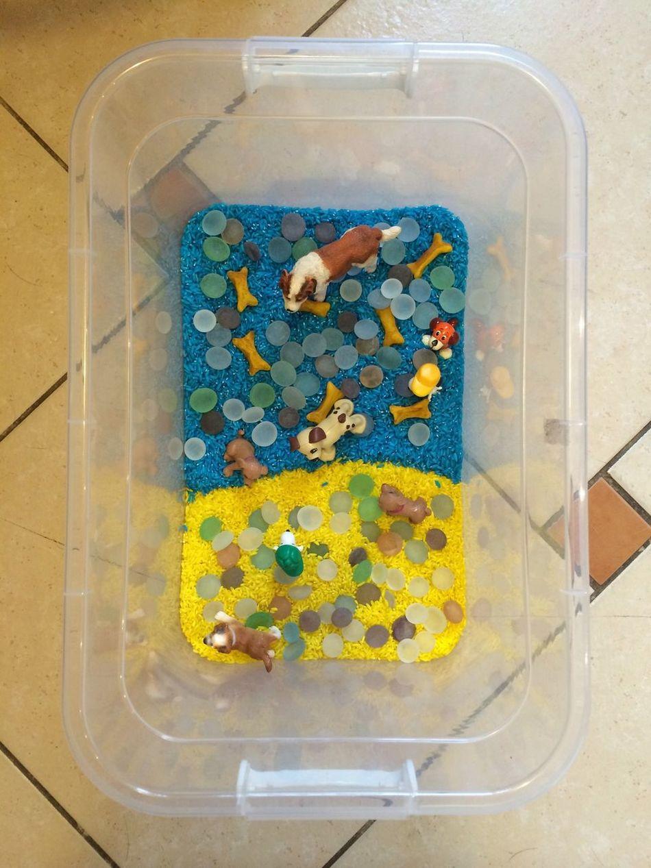 Собачья сенсорная коробочка Dogs Сенсорная коробка развивашки тематическая неделя