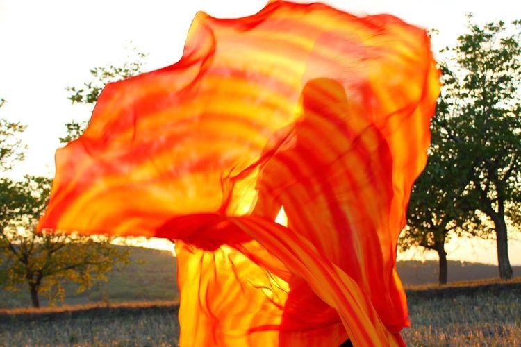 Nature, landscape, dancer, flag first eyeem photo EyeEmNewHere organic, trees, nature, dancing, fabric, landscape, woman only, one woman EyeEmNewHere Be. Ready. Be. Ready. EyeEmNewHere