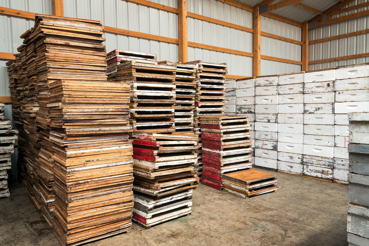Beekeeping equipment in Buffalo, Wyoming Bee Beehive Beehives Beekeeping Bees Box Boxes Buffalo Frame Frames Palette Palettes USA White Wyoming