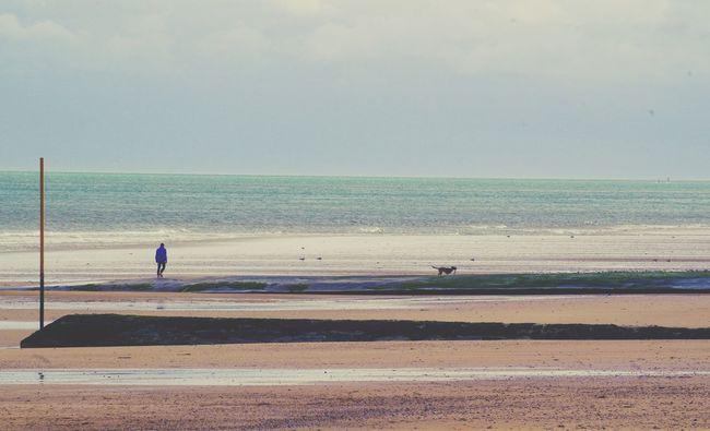 Cold Days Sea Normandie Lanscape Seascape Normandy Beach Lanscape Photography Landscape_Collection