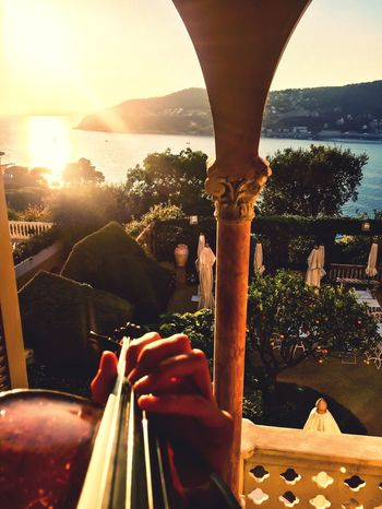 EyeEmNewHere France Côte D'Azur Violin Music Musician Sunset Sea And Sky Garden Be. Ready. Business Stories Love Yourself