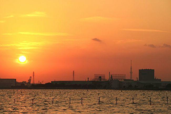 Sunset Sunsets Sunset_collection Sunset Silhouettes Sun Orange Color Sea Seascape Evening Glow Sky Skyporn Cloud Cloudporn Orangesunset Cityscape Tokyoskytree Skytree Tokyo Bay Tokyo Japan Sea