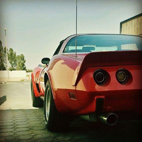 Corvette 1979 Classic Car