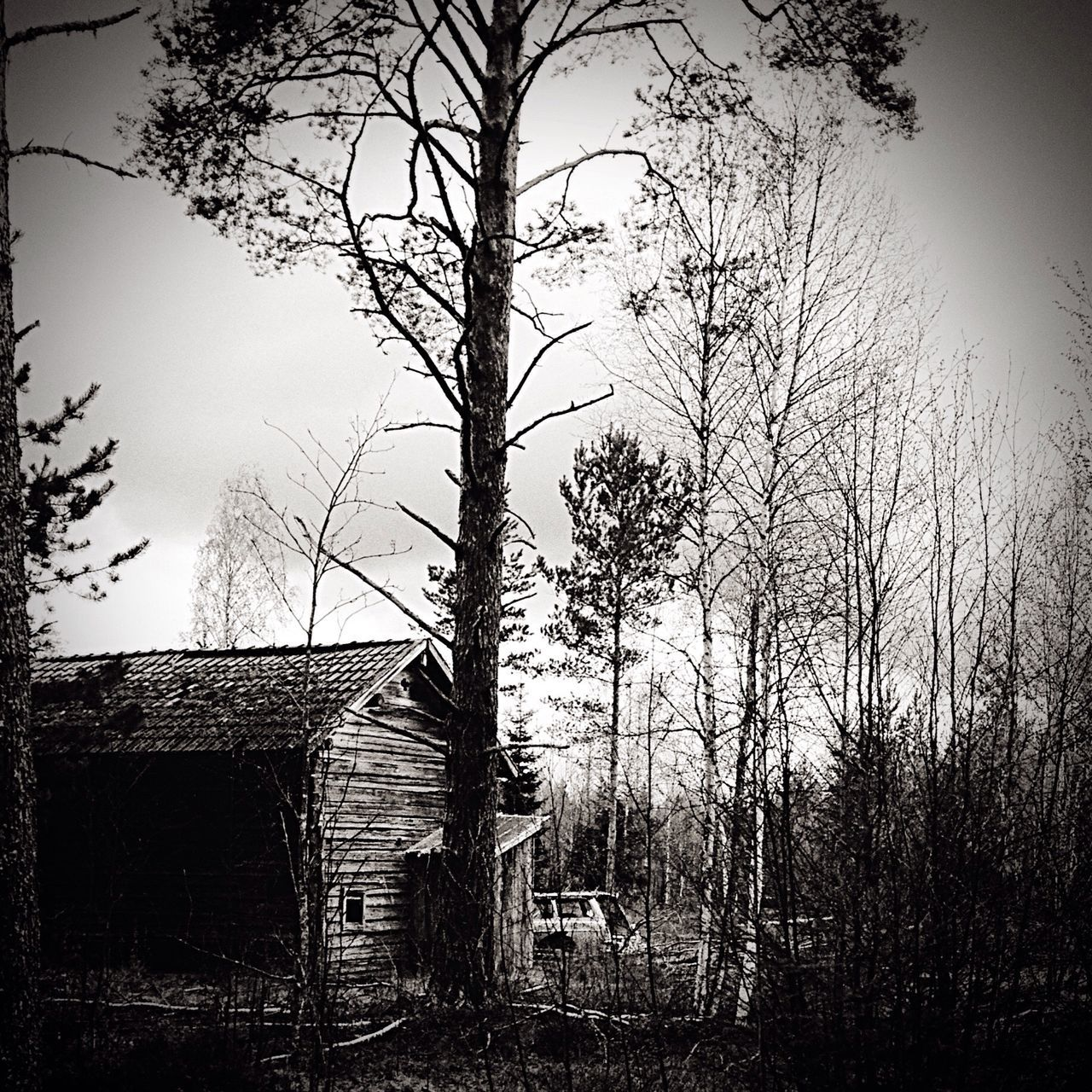 Make Magic Happen countryside in Sweden black&white