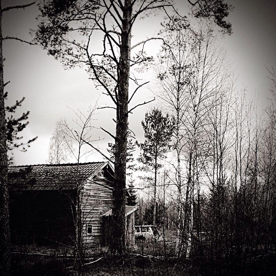 Make Magic Happen countryside in Sweden black&white