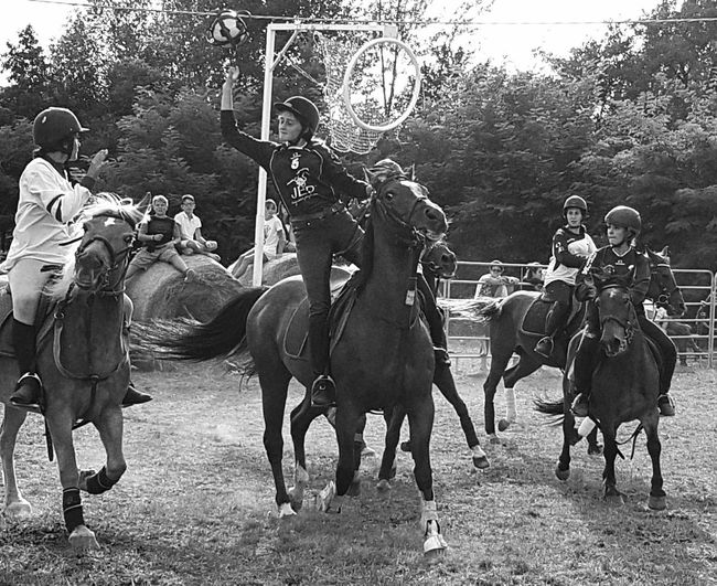 Real People Countryfair Day Nature Country People Country Life Horse Horserider Carousel Horse Horses Horseball Taking Photos Cellphone Photography Enjoying Life Horseback Riding Outdoors Domestic Animals Blackandwhite