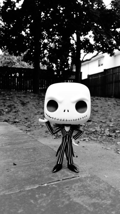 Tree JackSkellington Outdoor Play Equipment Fall Beauty Blackandwhite Bestever Wall - Building Feature Front View Upclose  Eyem Best Shots Funkopopvinyl Still Life Popfunko Close-up Amazing Creativity Imagination Enjoyment In Front Of Outdoor Photography Nightmarebeforechristmas Jackskeleton Black And White Black & White Blsckandwhite