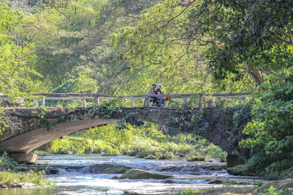 People Motorcyle Bridge Forest Nature Green Greenery Park Water River Havana Cuba