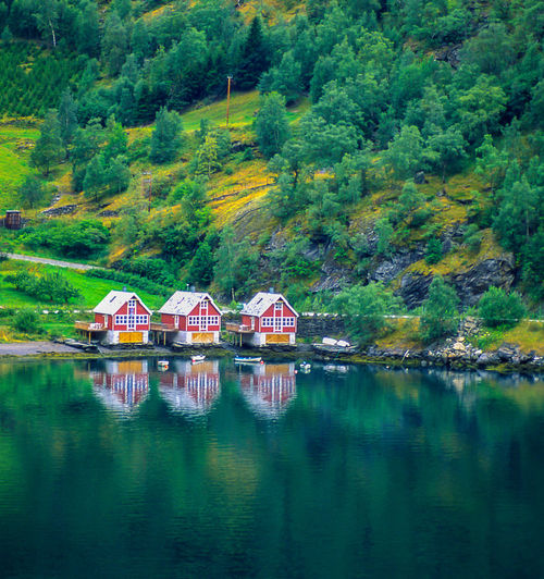 Geiranger,Norway In The Fjord Norvegian Fishermen's Houses Norway Reflections Scenics Tranquil Scene Tree Water