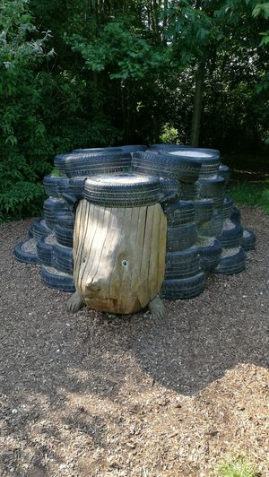 Manmade Wood Carving In Wood Wood Carving Park - Man Made Space Tyres Rushcliffe Country Park Ruddington Country Park