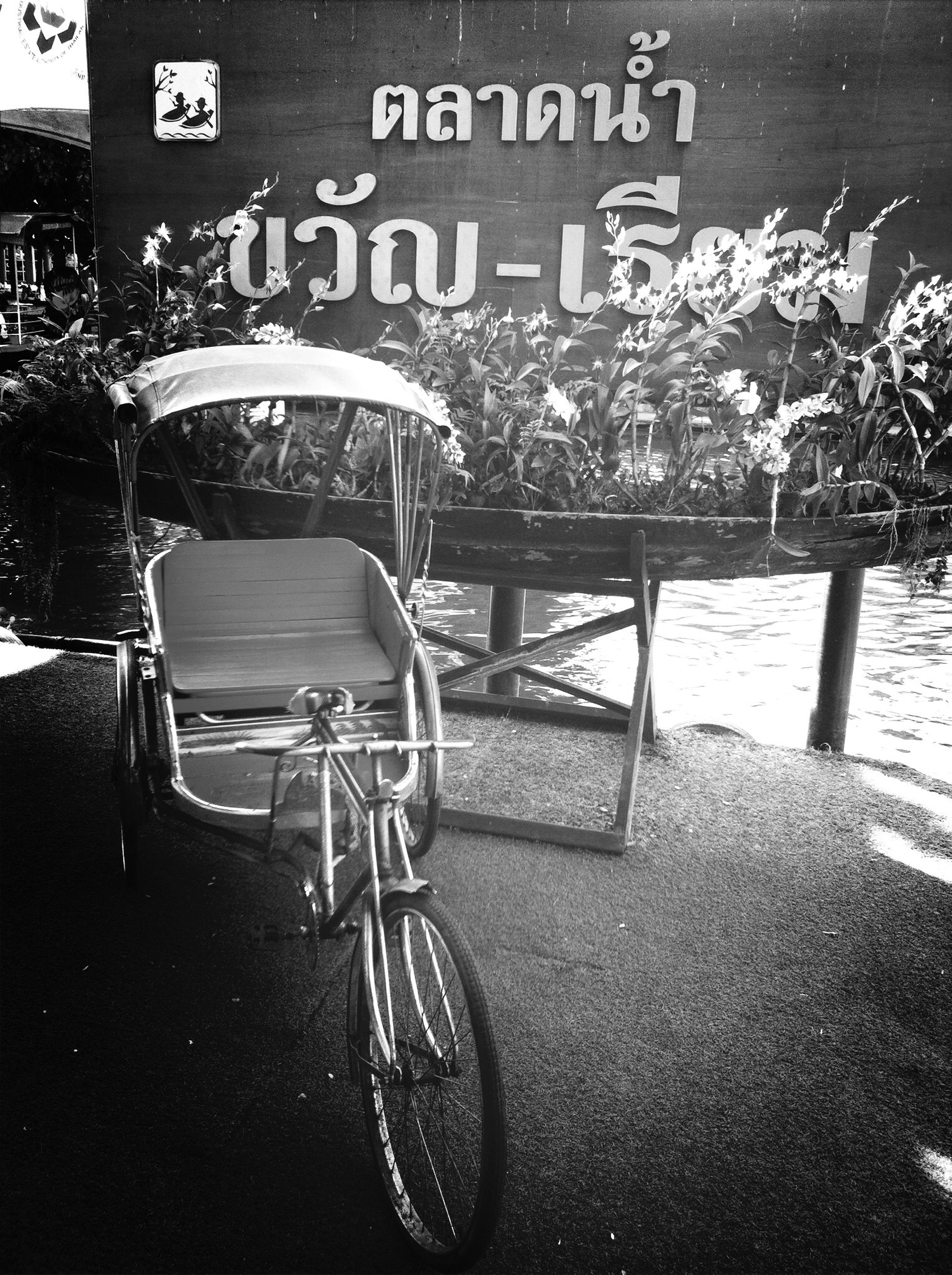 Floting Market Bicycle Vintage Black And White