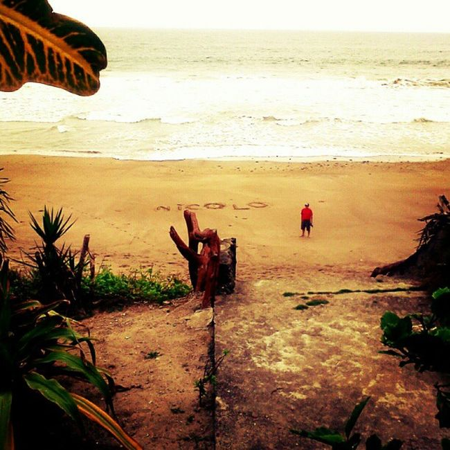 Piqueros Patas Azules Manabí Ecuador Instagood Beach Love Landscape