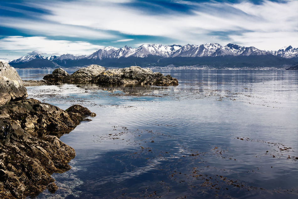 Beagle channel and Ushuaia in background. Bird starting to fly on the water (Argentina) Argentina Beagle Channel Fin Del Mundo Land Of Fire Mountain Patagonia Sea Sky Snowcapped Tierra Del Fuego Ushuaïa Water