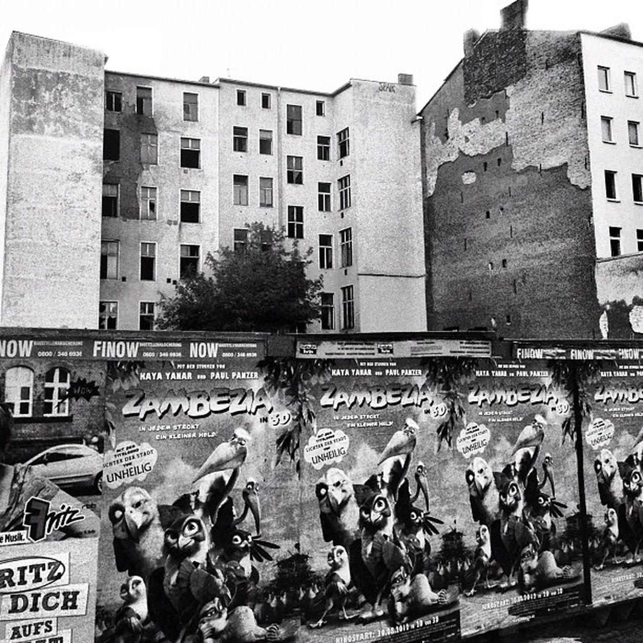#architecture #Berlin #igersberlin #instagood #tweegram #photooftheday #follow #instamod #igers #picoftheday #instragamhub #instadaily #insta_germany #bestoftheday #igdaily #webstagram #instragramers #ig_special #bw #blackamdwhite #berlinmitte IGDaily Tweegram Instagood Webstagram Instadaily Igersberlin Berlinmitte Insta_germany Architecture Instragramers Berlin Ig_special Bw Instragamhub Photooftheday Instamod Picoftheday Blackamdwhite Follow Bestoftheday Igers