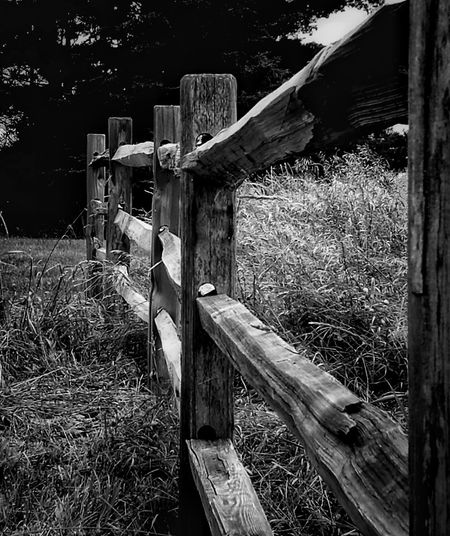 Beautiful rural fence, Wood - Material, Outdoors, Old-fashioned, Tranquil Scene EyeEm Selects EyeEmNewHere Breathing Space The Week On EyeEm