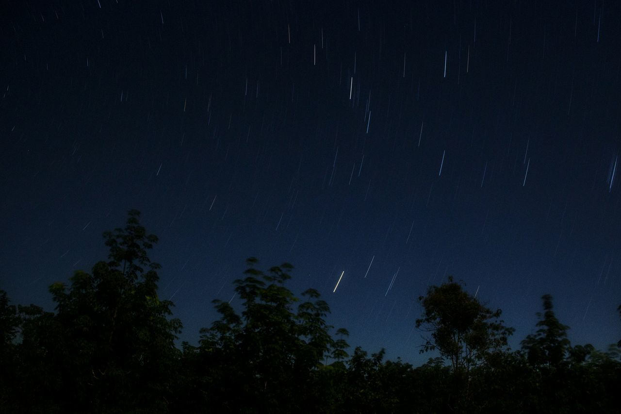 Night Sky Star Field Beauty In Nature Tree Nature Astronomy Star Trail Traveling Myanmar Canon Eos M2 Outdoors Tree Nightlife Nature Beauty In Nature EOSM2