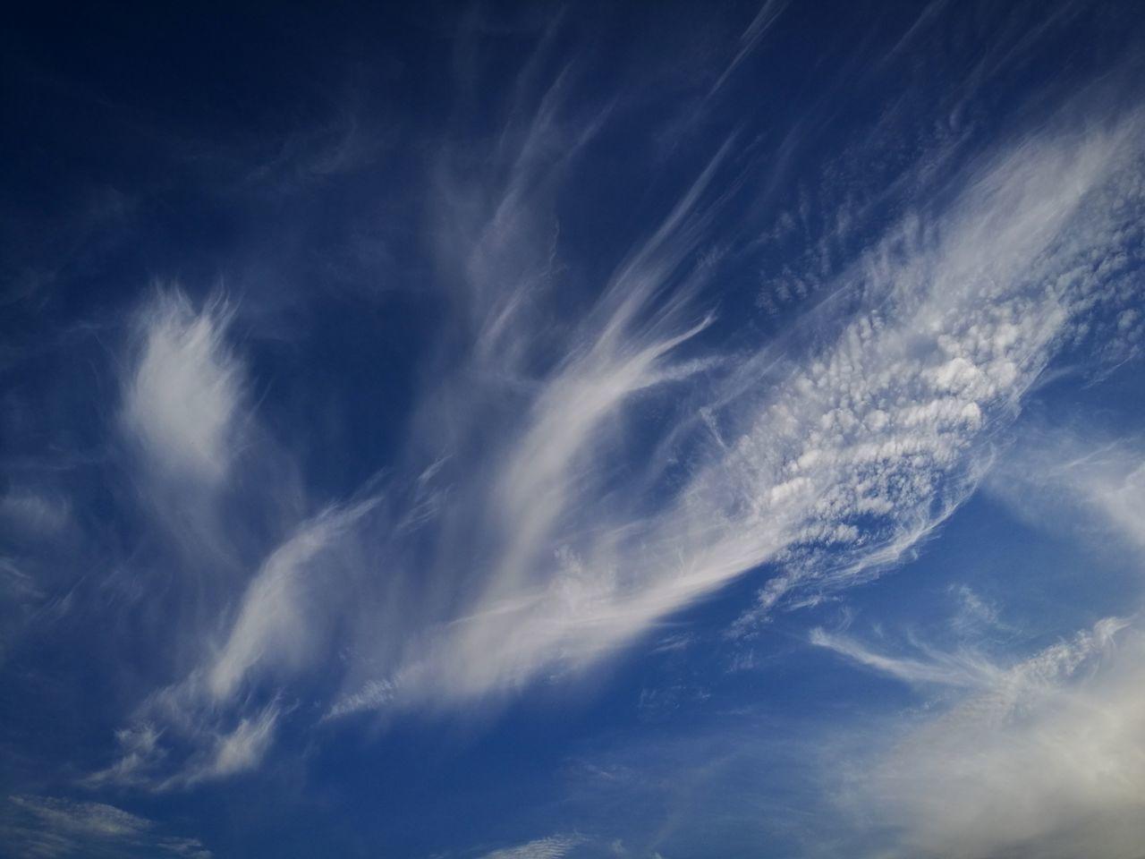 Pareidolia - Voando nas nuvens Nature Sky Only Outdoors No People Pareidolie Cloud - Sky Pontadosol Madeira Island