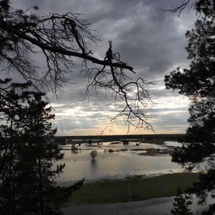 омск сибирь сибирскоелето Иртыш река Разлив Omsk Siberiansummer Siberia Highwater Flood Irtysh River