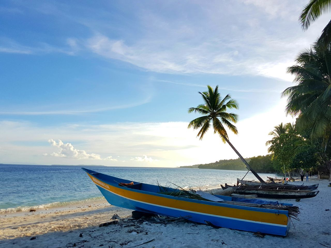 Beach Sea Boat Coconut Tree Water Nautical Vessel Transportation Sand Sky Horizon Over Water Shore Tranquil Scene Scenics Tropical Climate Nature Anggopi Beach Biak Papua Indonesia