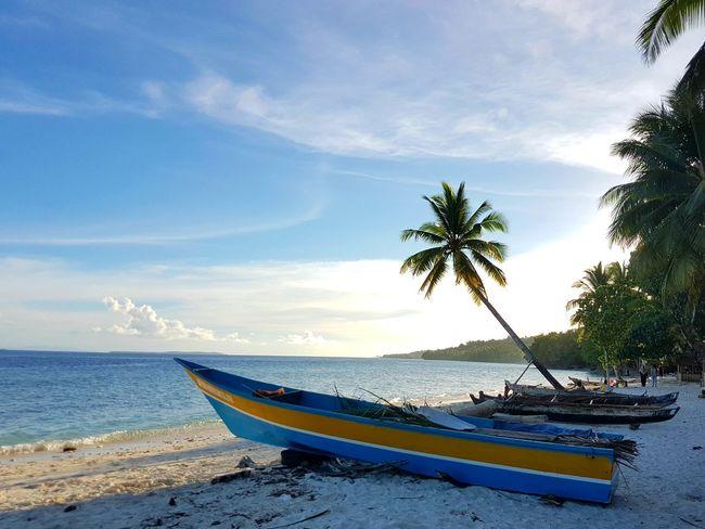 Beach Sea Boat Coconut Tree Water Nautical Vessel Transportation Sand Sky Horizon Over Water Shore Tranquil Scene Scenics Tropical Climate Nature Anggopi Beach Biak Papua Indonesia