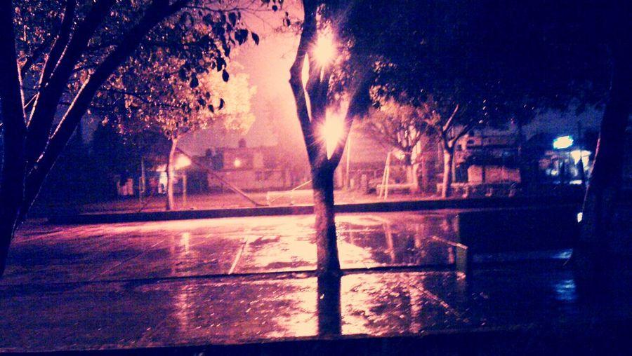 La Lluvia De Hoy Neblina Linda Noche
