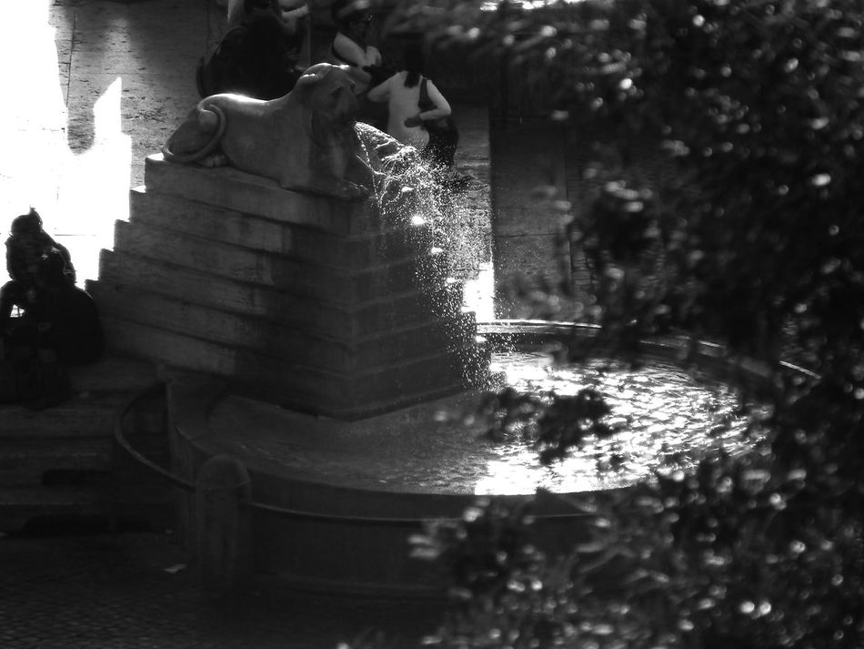 Bianco E Nero Black & White Black And White Blackandwhite Blackandwhite Photography Brunnen Close-up Day Fontana Fountain Fountain Itala Italie Italien Italy Italy❤️ Italy🇮🇹 No People Outdoors Rom Roma Rome Schwarzweiß Water Waterfall