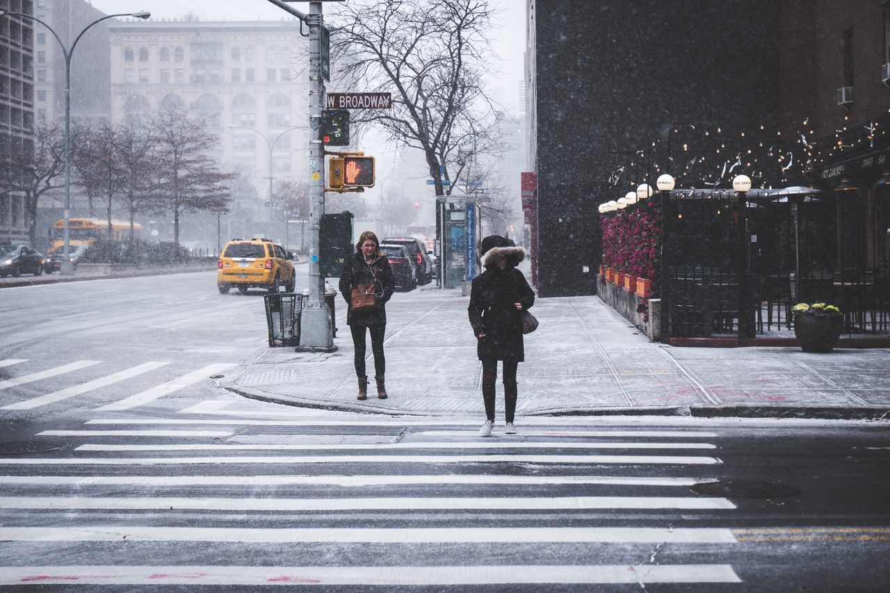Winter Snow Cold Temperature City Street Weather City Street City Life Tree Warm Clothing Snowing Full Length People Adults Only Built Structure Outdoors Bare Tree Adult Nature Day