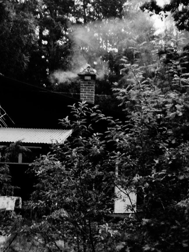 Chimney Smoke Cottage Gräsö Sverige Eye4black&white  EyeEm Best Shots - Black + White Eye4photography  EyeEm Best Shots
