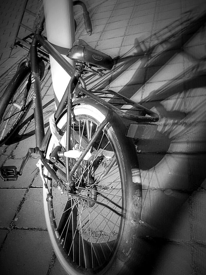Celebrate Your Ride Bnw_friday_eyeemchallenge Shadowplay another Revolting Art Production Dutch Bicycle Parking Perfect Parking Perfect Shadow https://youtu.be/NDPvaBdP6iA