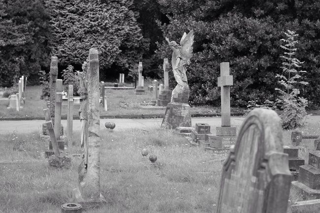 Bw_collection Eye4photography  Blancoynegro Graveyard Beauty Graveyard Noir Et Blanc Black&white Monochrome Cemetery Black & White Photography Blackandwhite
