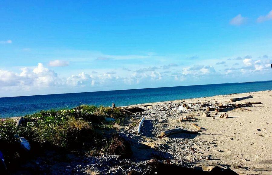 Sea Beach Horizon Over Water Sand Blue Sky Scenics Nature Growth Day Beauty In Nature Taking Photos ❤ Check This Out 😊 Blue Sky White Clouds Tropical Climate Island In The Sun Beauty In Nature Outdoors Tree Water Cloud - Sky