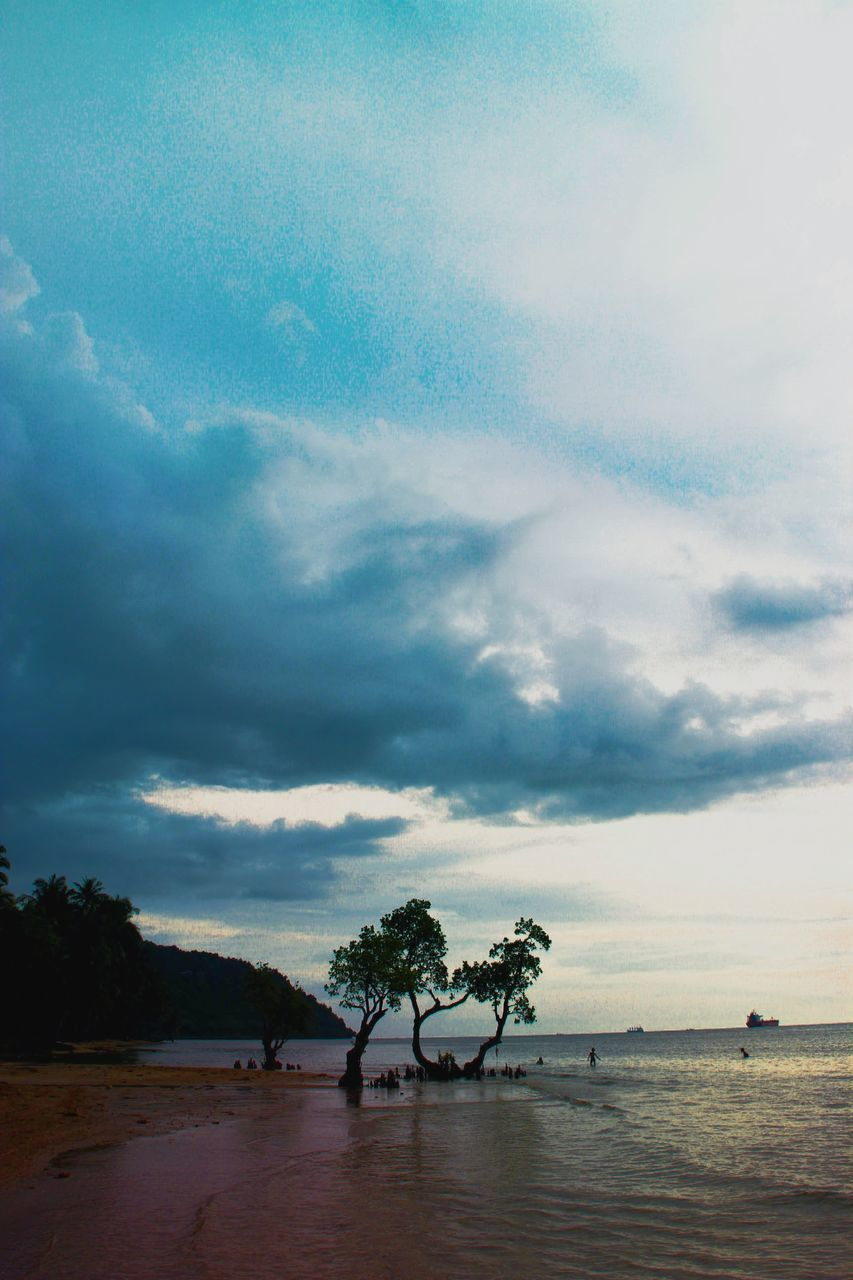 sky, tree, cloud - sky, tranquil scene, sea, scenics, beauty in nature, nature, tranquility, water, beach, horizon over water, day, outdoors, palm tree, landscape, sand, no people