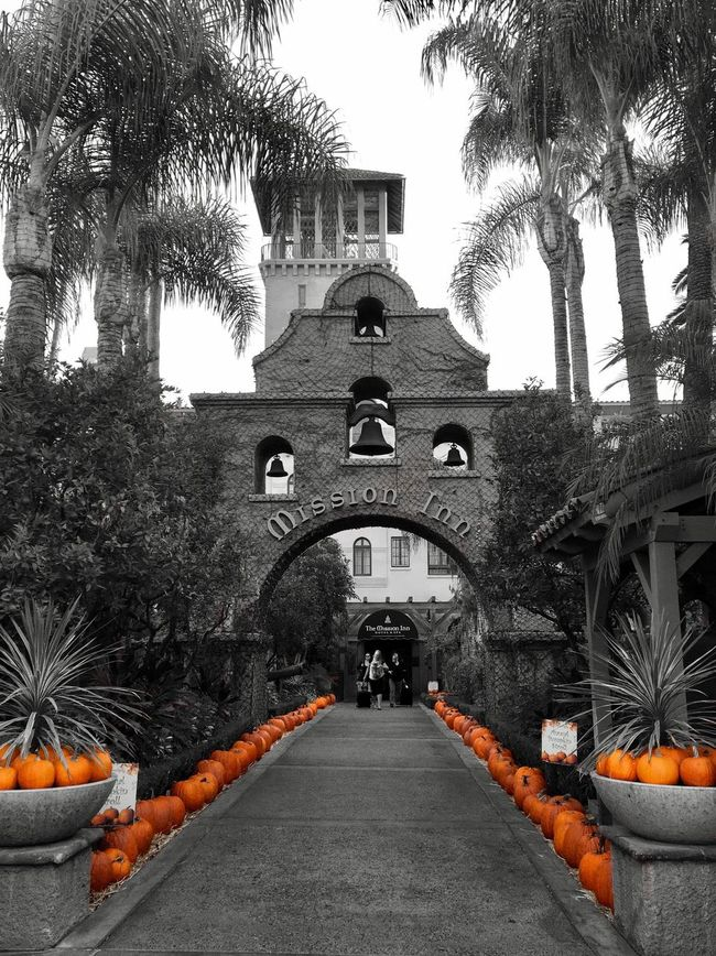 Pumpkin Stroll Architecture Autumn Diminishing Perspective Enjoying Life My Smartphone Life EyeEm Best Shots Hello World From My Point Of View