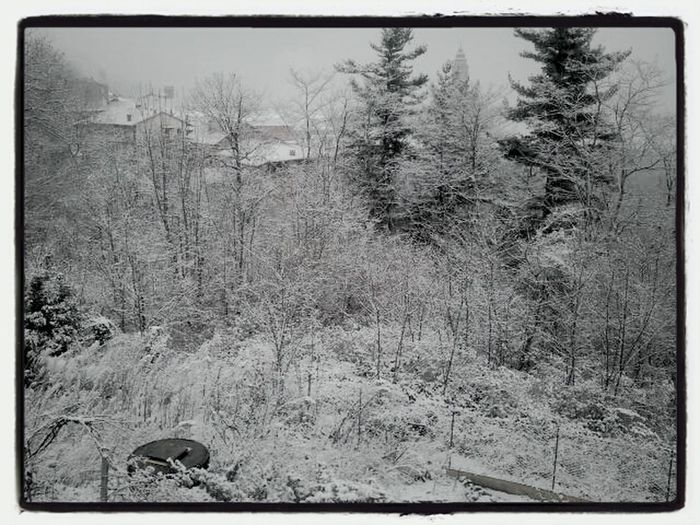 it's snowing....nevicaaa....il neige :-D Taking Photos Winter Photo Snow Photography Urban Nature Snowing Mobile Photography