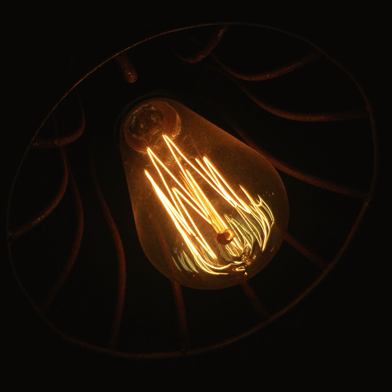 Filament Lights Recycled Illumination AMPt Community