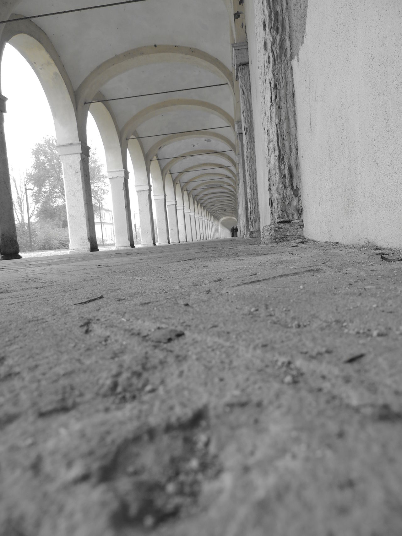 Arcade Arch Architectural Column Architectural Detail Architecture Architecture Architecture_collection Architecturelovers Arichitektur Built Structure Colonnade Column Comacchio Corridor Day Diminishing Perspective History Outdoors Prospective Prospective Architecture_bw Streetphotography_bw Prospective Photography Prospectives Surface Level The Way Forward Wall - Building Feature