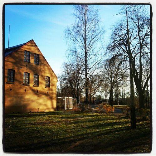 Picture #100 #Trondheim #suhmhuset #museum #sun #lowsun #bluesky #trip Sun Museum Trip 100 Bluesky Trondheim Lowsun Suhmhuset
