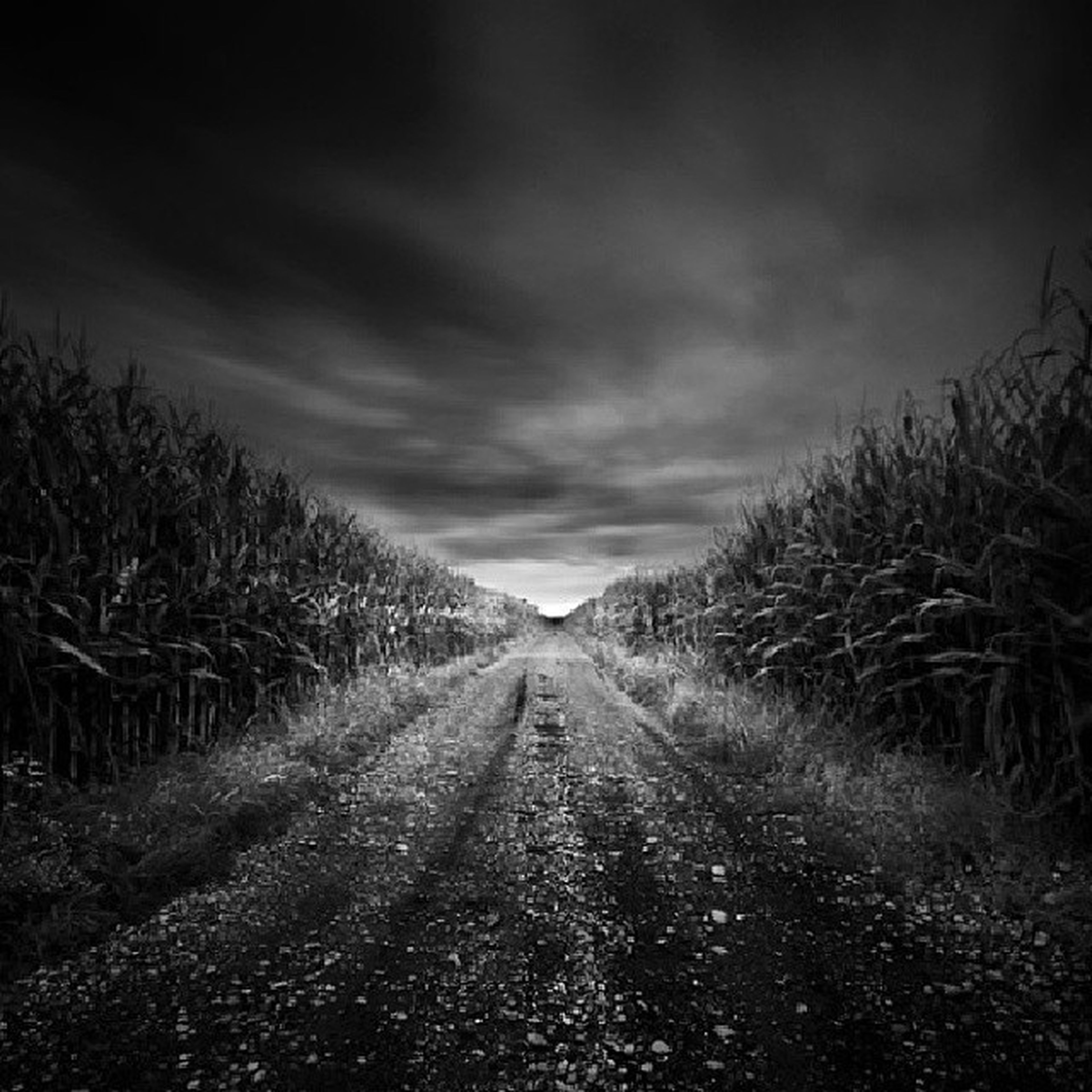 the way forward, sky, diminishing perspective, vanishing point, tranquility, cloud - sky, dirt road, tranquil scene, landscape, field, cloudy, nature, tree, road, cloud, grass, rural scene, scenics, transportation, beauty in nature