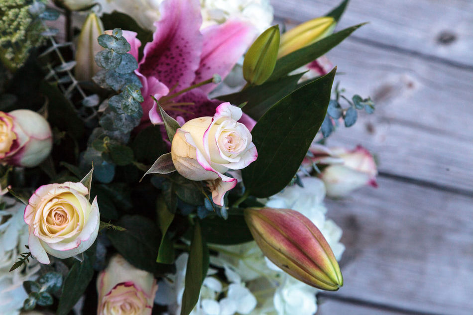 Beautiful stock photos of valentinstag,  Bouquet,  Bud,  Close-Up,  Day